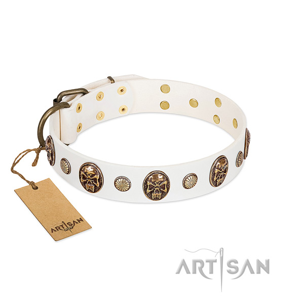 Embellished full grain leather dog collar for daily walking
