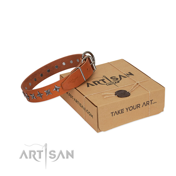 Quality natural leather dog collar with exceptional decorations