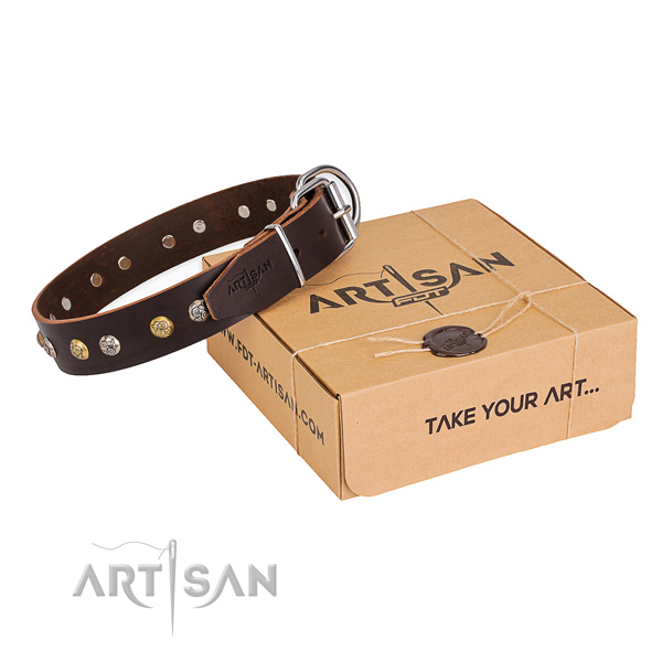 Gentle to touch genuine leather dog collar made for everyday walking