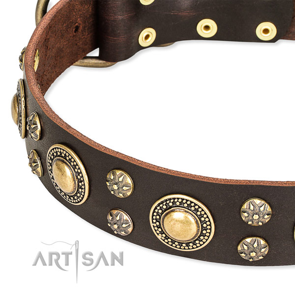 Comfortable wearing decorated dog collar of quality full grain leather