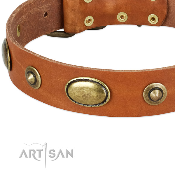 Durable hardware on full grain leather dog collar for your four-legged friend