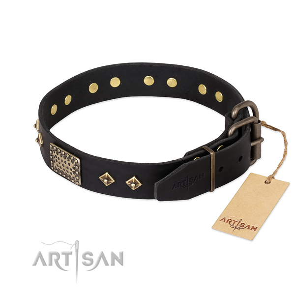 Leather dog collar with corrosion proof buckle and adornments