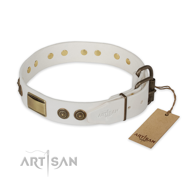 Strong traditional buckle on leather collar for basic training your doggie