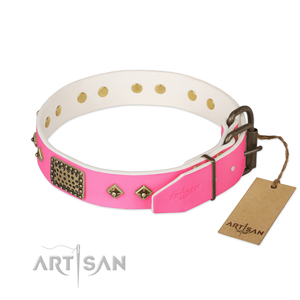 Durable fittings on daily use dog collar