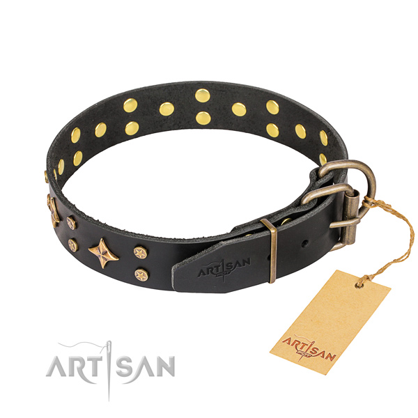 Daily use studded dog collar of strong full grain leather