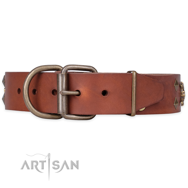 Everyday walking studded dog collar of high quality full grain leather