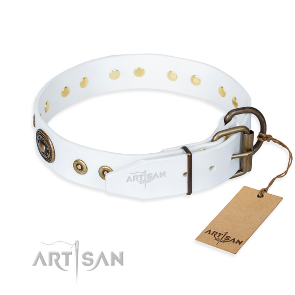 Full grain leather dog collar made of quality material with strong embellishments