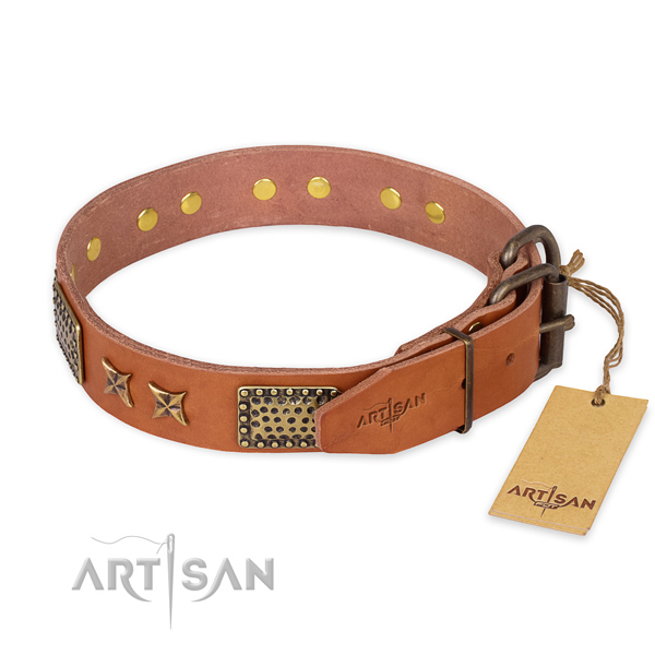 Corrosion proof buckle on leather collar for your handsome dog