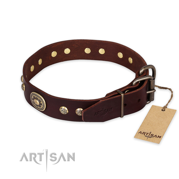Rust resistant traditional buckle on leather collar for daily walking your doggie