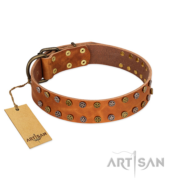 Comfy wearing top rate full grain genuine leather dog collar with studs