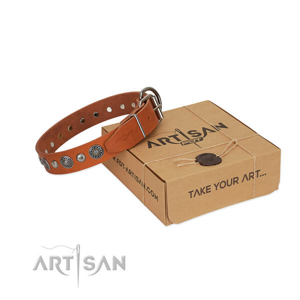 Leather collar with corrosion proof D-ring for your attractive doggie