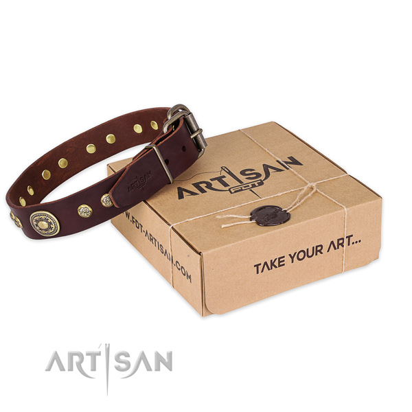 Strong buckle on full grain genuine leather dog collar for walking