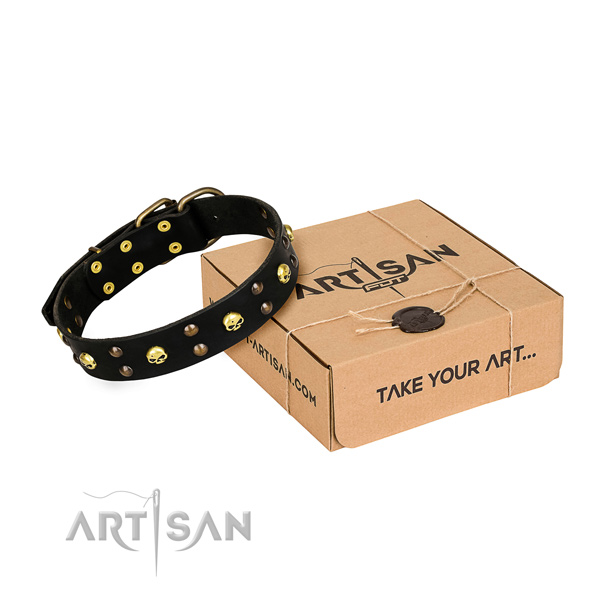 Stylish walking dog collar of quality full grain genuine leather with adornments