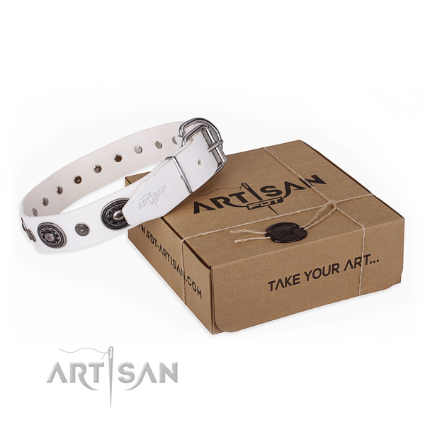 High quality full grain natural leather dog collar created for fancy walking