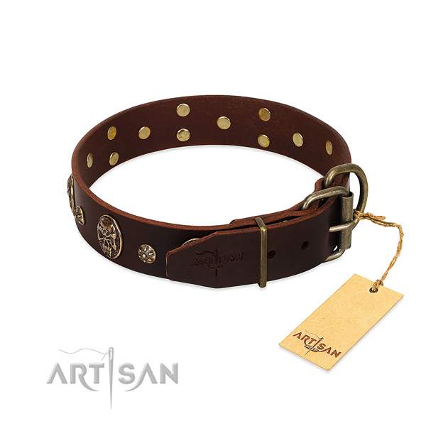 Rust-proof buckle on leather dog collar for your four-legged friend