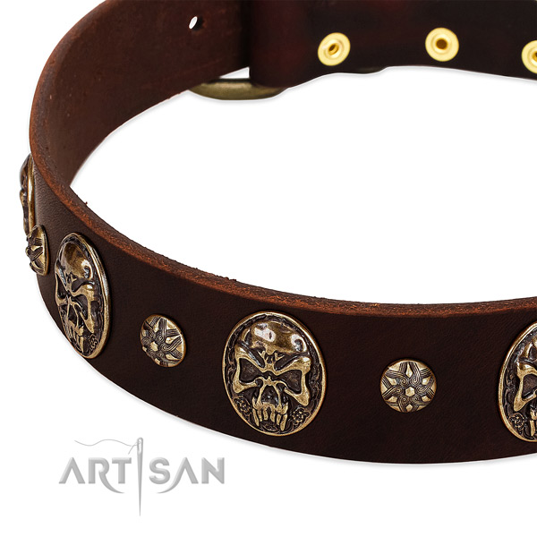 Corrosion proof hardware on full grain natural leather dog collar for your dog