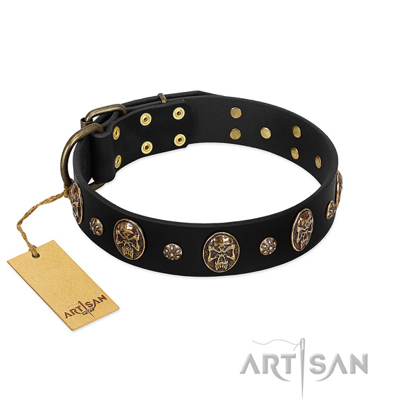 Adorned full grain genuine leather collar for your pet