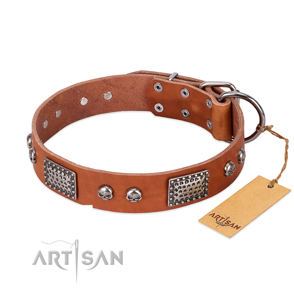 Adjustable natural genuine leather dog collar for everyday walking your four-legged friend