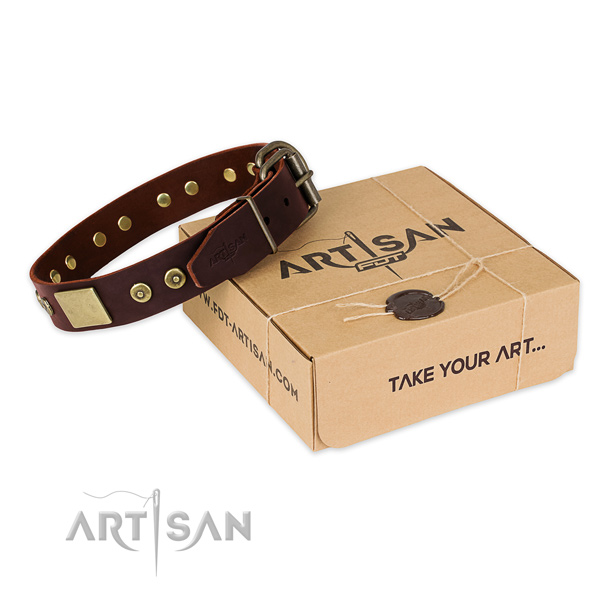 Strong traditional buckle on dog collar for everyday use
