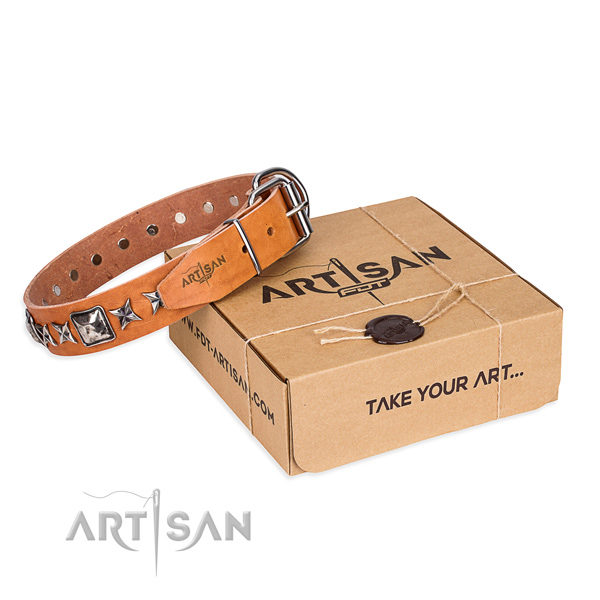 Daily walking dog collar of fine quality full grain genuine leather with studs
