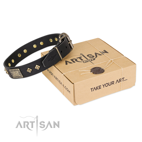 Embellished leather collar for your stylish dog