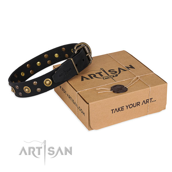 Strong hardware on leather collar for your impressive pet