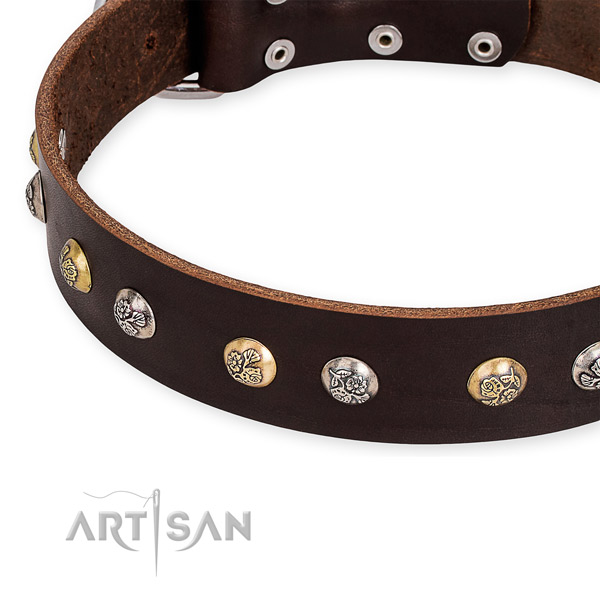 Natural genuine leather dog collar with impressive corrosion proof adornments
