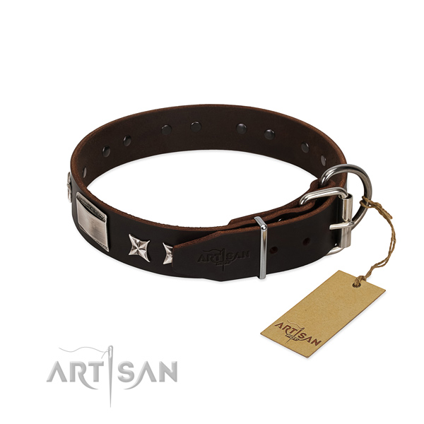 Best quality collar of genuine leather for your attractive four-legged friend