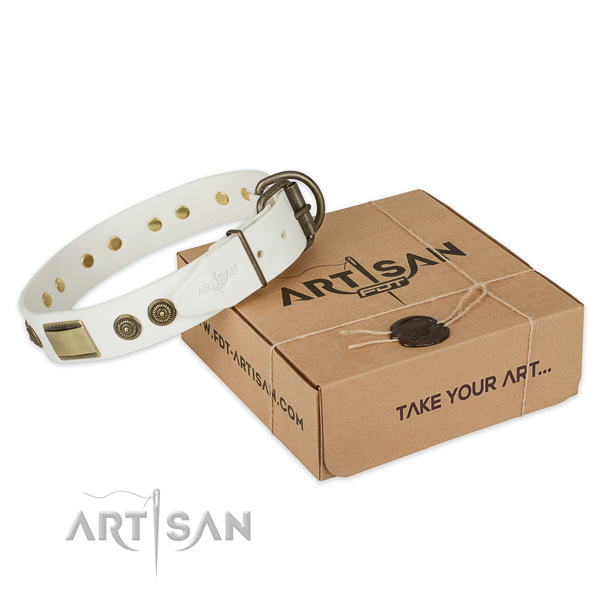 Durable buckle on leather dog collar for basic training