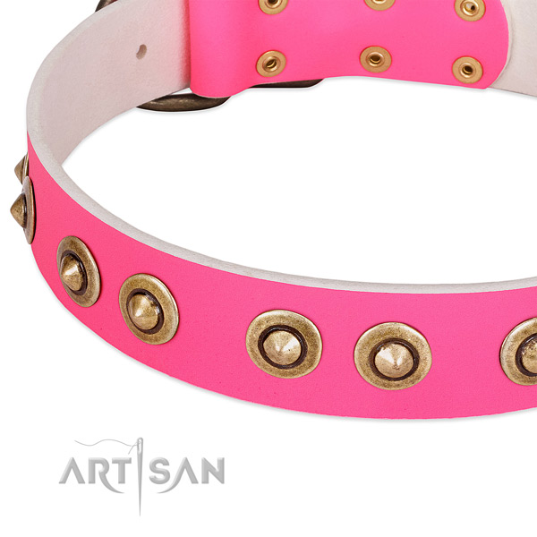 Reliable studs on genuine leather dog collar for your pet