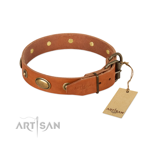 Reliable decorations on natural leather dog collar for your doggie
