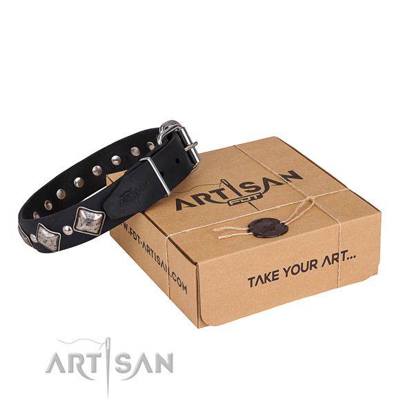 Comfy wearing dog collar of durable full grain natural leather with adornments