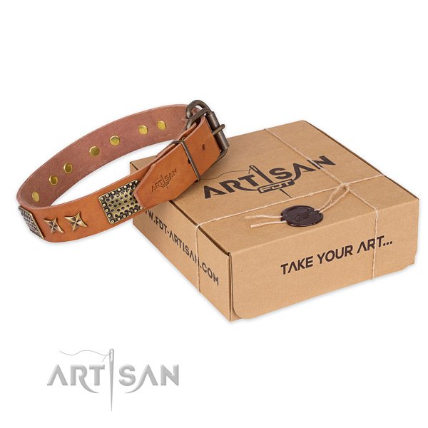 Reliable buckle on full grain genuine leather collar for your beautiful dog