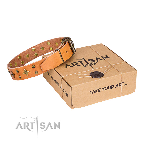 Walking dog collar of top notch full grain genuine leather with embellishments
