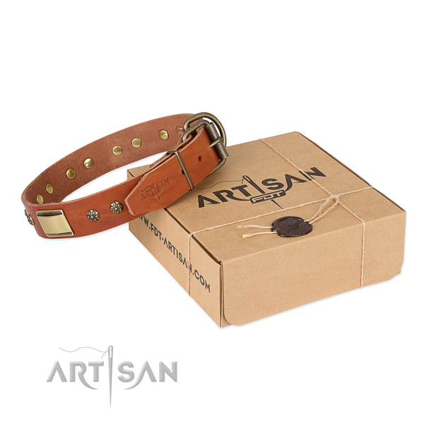 Impressive natural genuine leather collar for your handsome pet