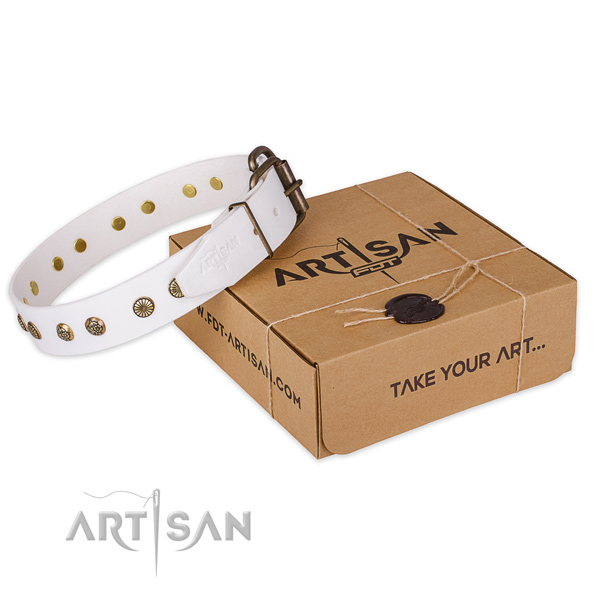 Strong traditional buckle on leather collar for your lovely canine
