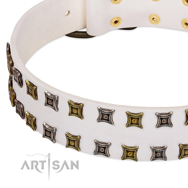 Full grain natural leather dog collar with adornments for your beautiful canine