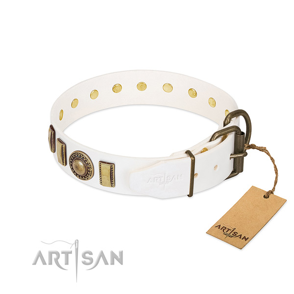Durable leather dog collar crafted for your dog