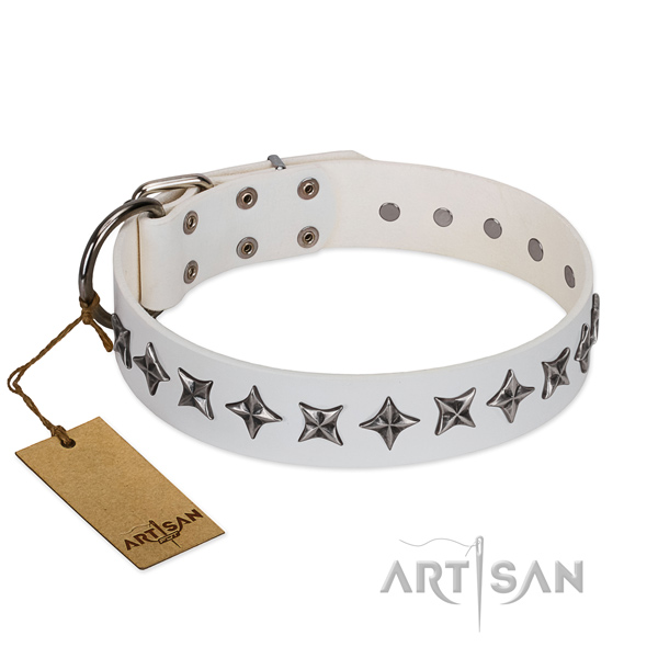 Comfy wearing dog collar of reliable full grain natural leather with decorations