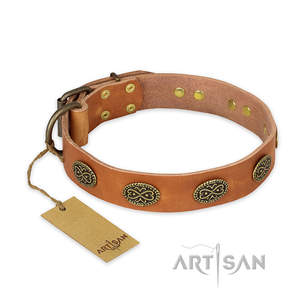Stylish leather dog collar with rust-proof fittings