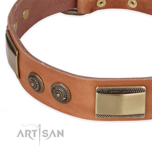 Impressive genuine leather collar for your stylish doggie
