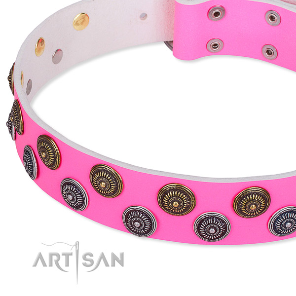 Daily use embellished dog collar of durable full grain leather