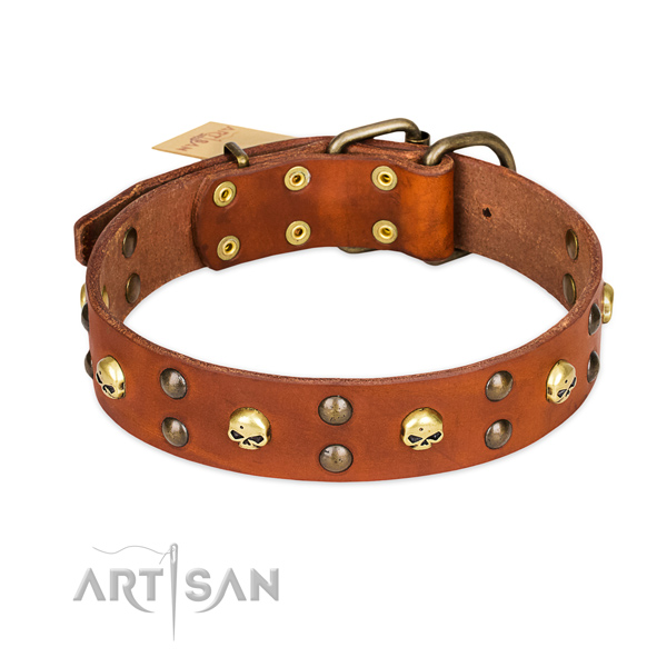 Handy use dog collar of durable leather with decorations