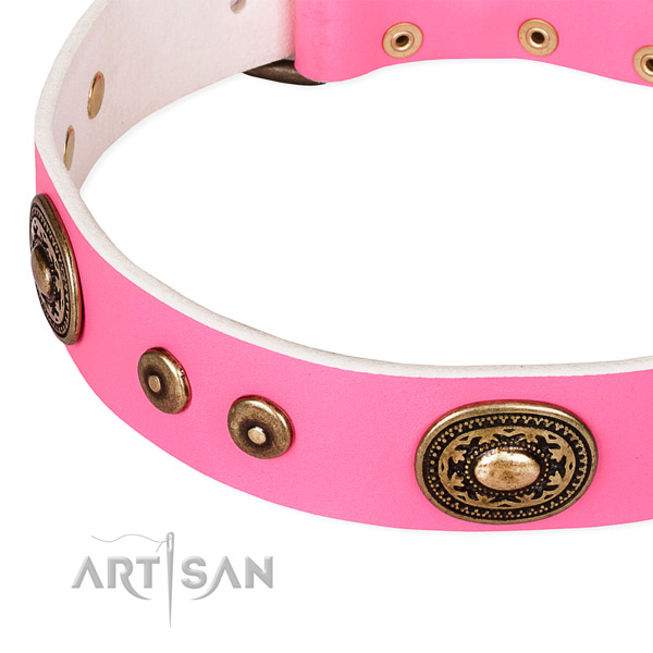 Adorned dog collar made of top notch natural genuine leather