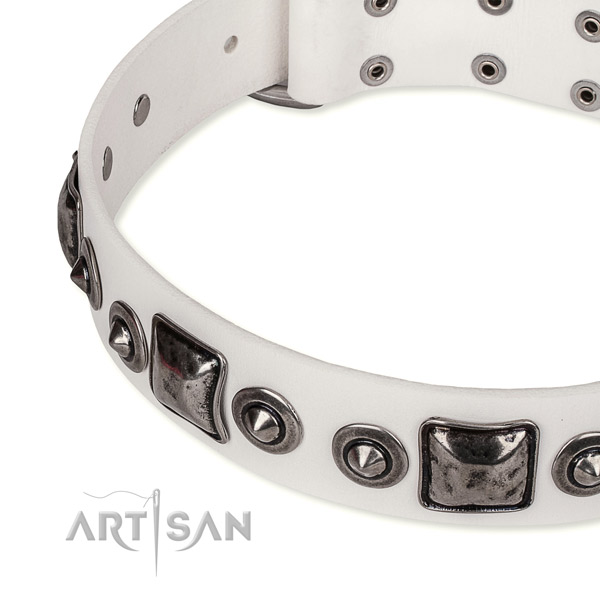 Best quality leather dog collar created for your impressive four-legged friend