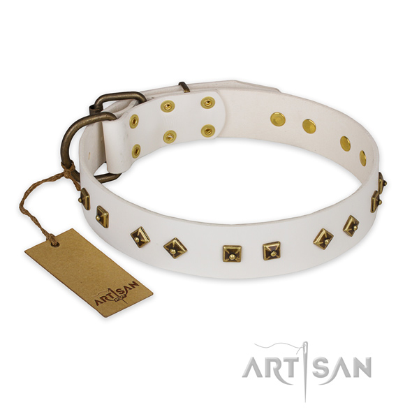 Stylish design full grain natural leather dog collar with reliable hardware