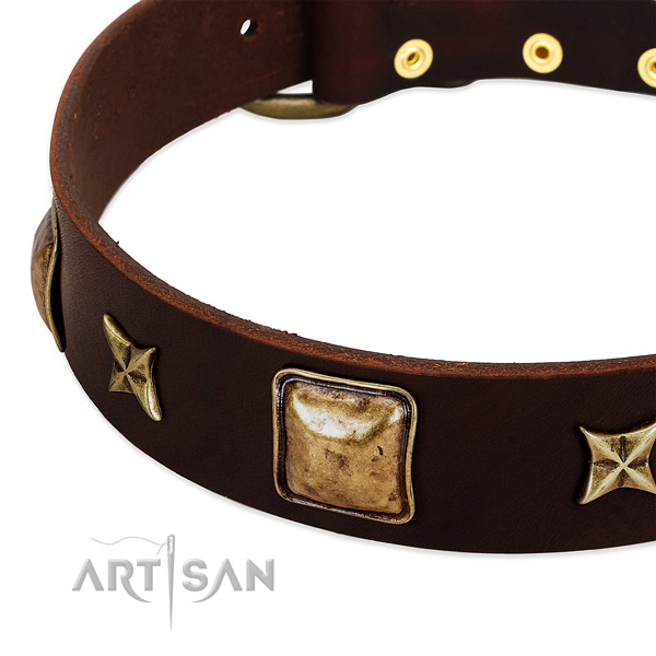 Rust resistant decorations on natural genuine leather dog collar for your dog