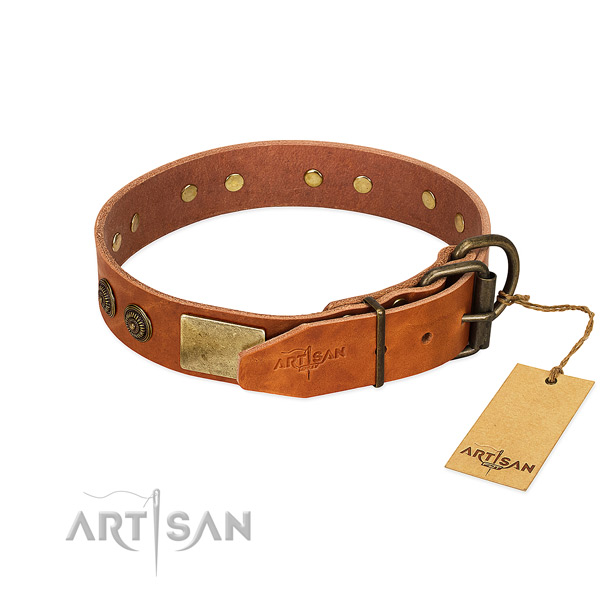 Strong traditional buckle on genuine leather collar for basic training your doggie