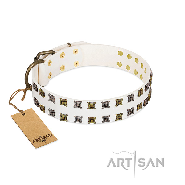 Full grain leather collar with unique studs for your pet