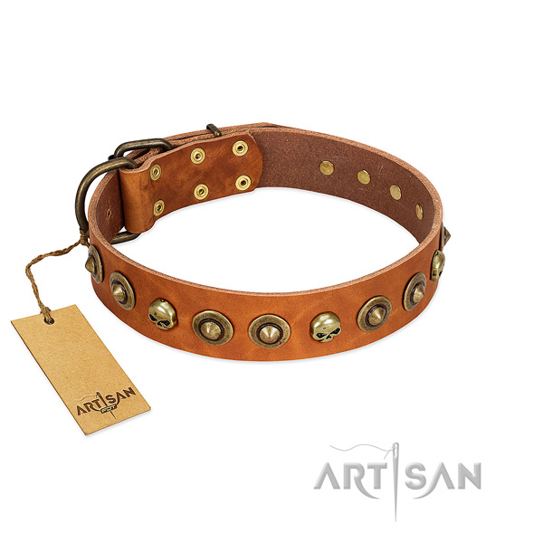 Genuine leather collar with top notch embellishments for your pet